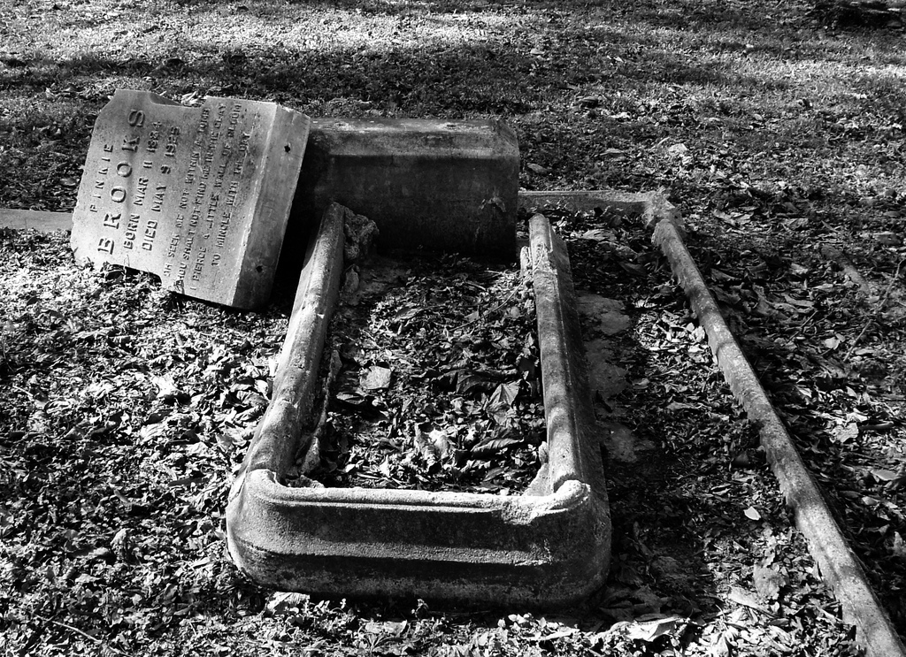 One of the three oldest African-American cemeteries in Houston, by Patrick Feller