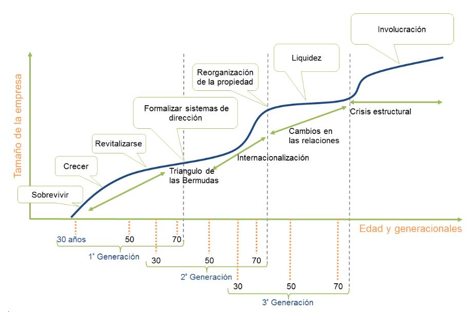 evolucion EF