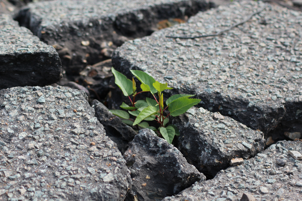 Breakthrough, by Kleuske