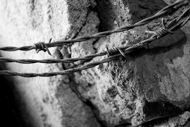 Boundaries, by Kreg Steppe