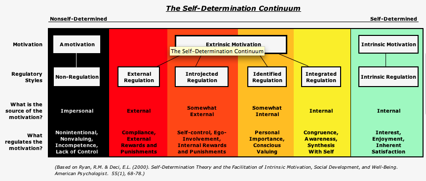 1 what motivates our behavior according to skinner s theory is it internally or externally motivated Motivation refers to the dynamics of our behavior each have a considerable effect on how an individual is motivated according to motivation theory.