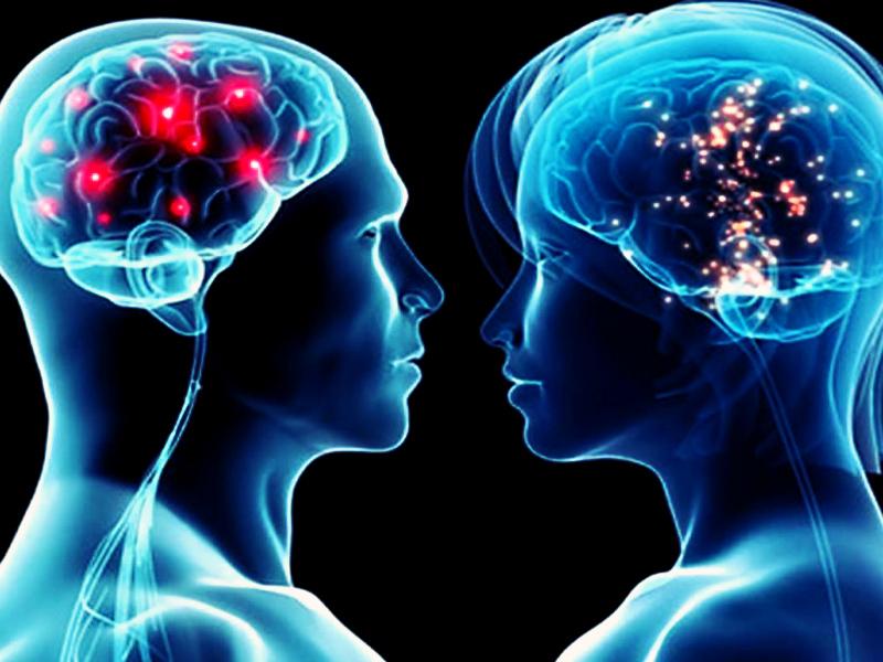 Hombre Y Mujer Diferencias Reales Y Estereotipos Nuria Chinchilla
