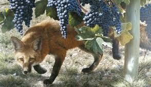 zorra y uvas 2